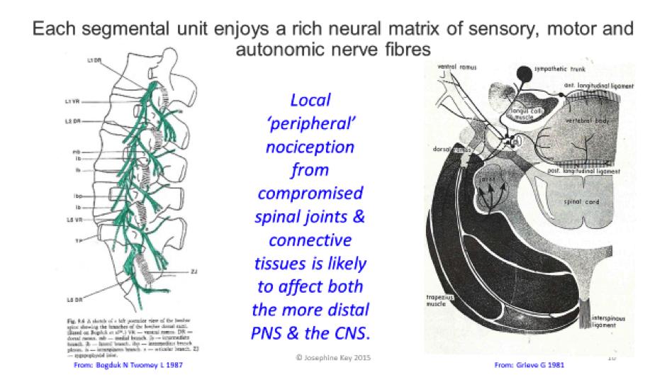 neural matrix